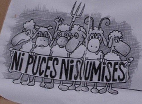 Vannes. « Pas de puce électronique pour nos moutons » (LT) dans Justice & libertés puces