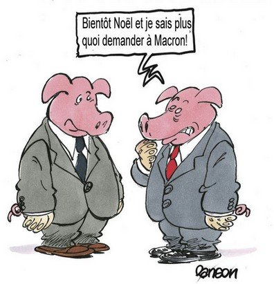 porcs mac