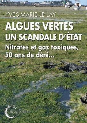 algues-vertes-2